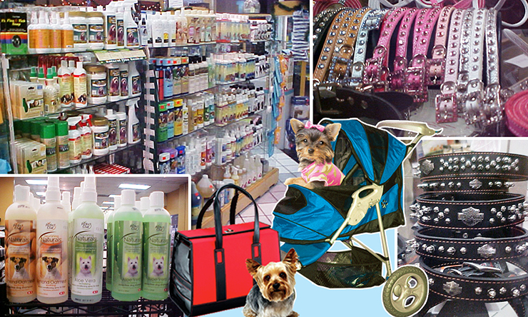 Pet Accessories...All The Bling Your Pet Could Need!