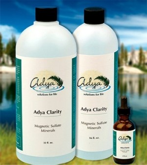 Adya Clarity Magnetic Sulfate Minerals