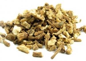 BioComplete Organic Dong Quai Root Powder