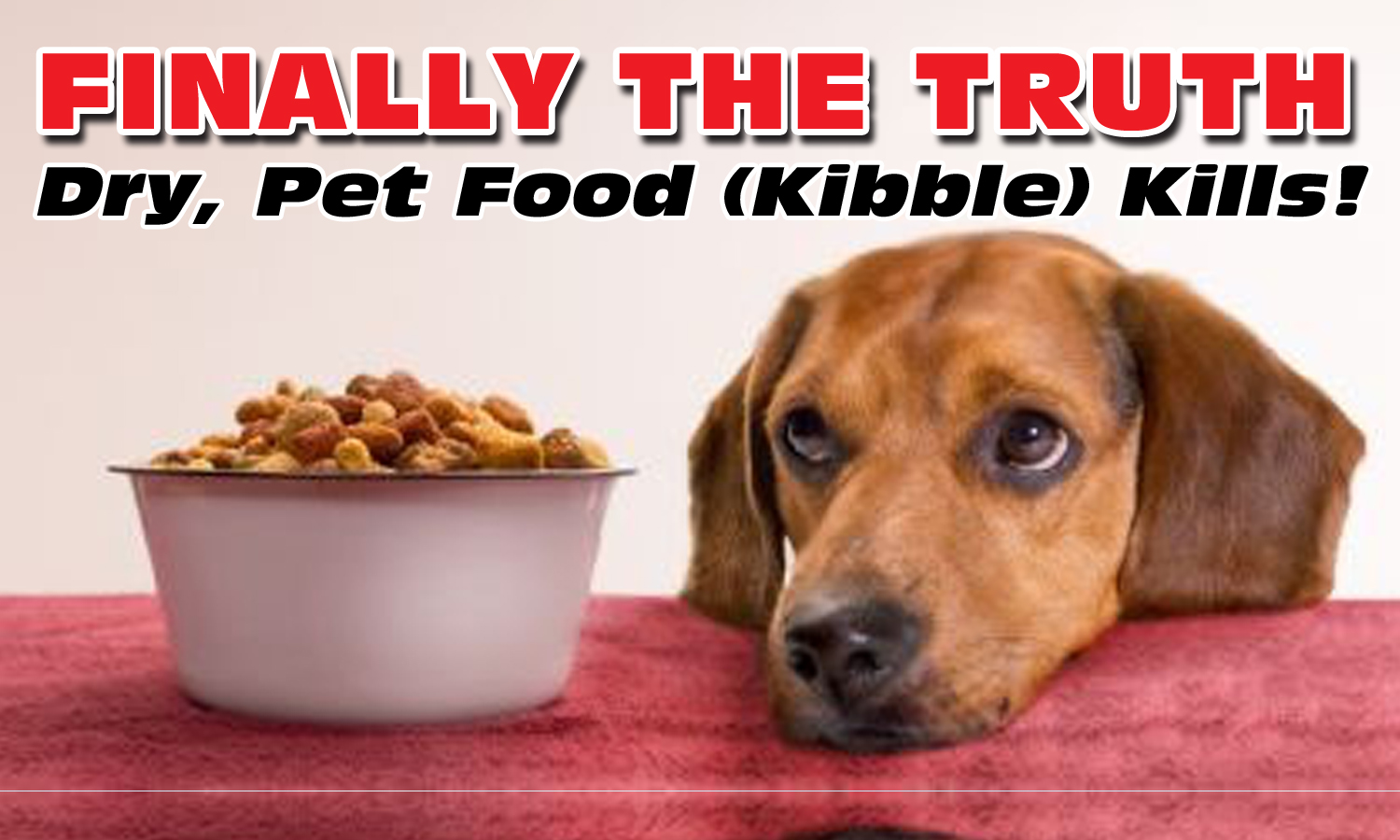 Dry Kibble Kills! Click For More Information And To Purchase